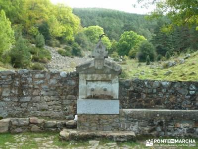 Parque Natural Sierra de Cebollera (Los Cameros) - Acebal Garagüeta;asociacion senderismo belenes v